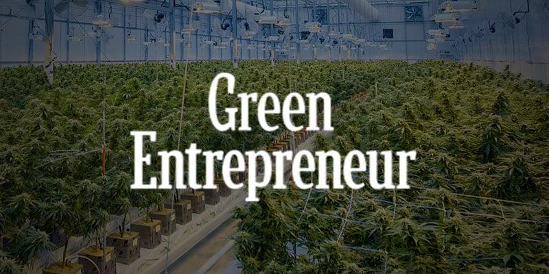 Green Entrepreneur indoor commercial harvest
