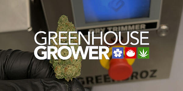 Greenhouse-Grower-Update-on-Cannabis-Trimming-Technology-Cover